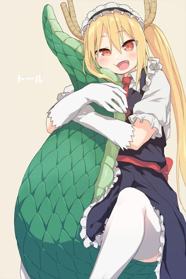【トール】小林さんちのメイドラゴンエロ画像
